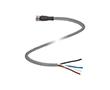 Gniazdo kablowe M8, kabel PCW, Liczba styków: 4, przewód: PVC: K V31-GM-2M-PVC