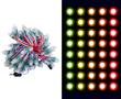 Pixele LED RGB, 12V DC, WS2811, okrągły, 20-22lm, 50 szt w wiązce: OLPX.RGB.12-50-R